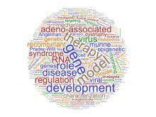 Wordcloud of 86 most recent Genetics dissertation title key words