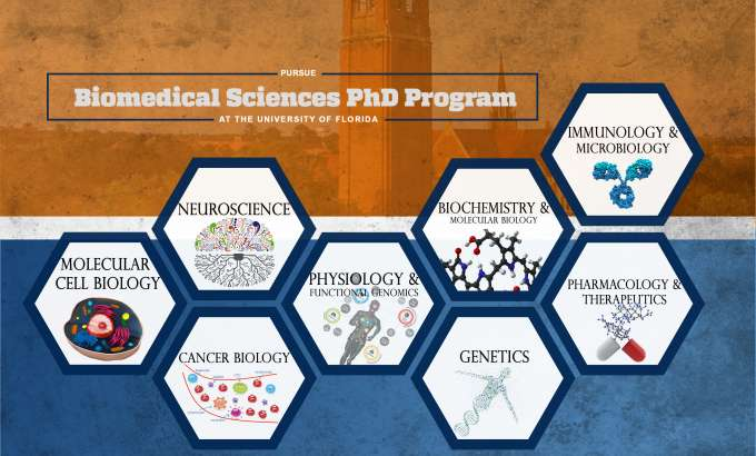 BMS PhD Program Concentrations